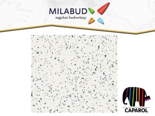 Caparol Disboxid 948 Color Chips Płatki Do żywic 1kg